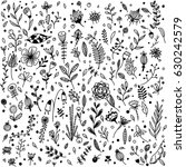 hand drawn various plants and... | Shutterstock . vector #630242579