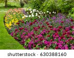 various floral combinations at... | Shutterstock . vector #630388160