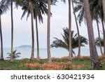 amaryllis on the beach.  | Shutterstock . vector #630421934