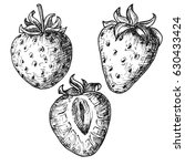 Hand Drawn Strawberry Set...