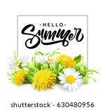 inscription summer on... | Shutterstock .eps vector #630480956