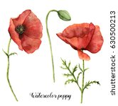 Watercolor Poppies Set. Hand...