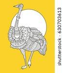 ostrich bird fashion raster...   Shutterstock . vector #630703613