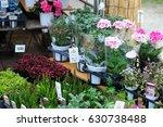 flower plants shop flea market... | Shutterstock . vector #630738488