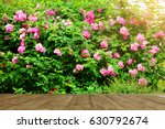 Stock photo empty top wooden table on rose garden in park 630792674