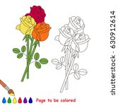 rose bouquet to be colored  the ... | Shutterstock .eps vector #630912614