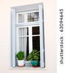 Elegant House Window And Flower ...