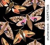 flying moths seamless | Shutterstock .eps vector #630997136