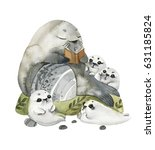 illustration cute fur seals in... | Shutterstock . vector #631185824