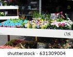 flower shop flea market at... | Shutterstock . vector #631309004