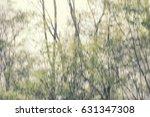 blurred natural spring... | Shutterstock . vector #631347308