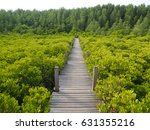 golden mangrove field and... | Shutterstock . vector #631355216