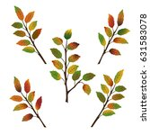 Set Of Five Branches Of...