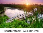 rural summer sunrise landscape... | Shutterstock . vector #631584698