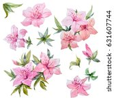 Watercolor Set Of Pink Azalea...