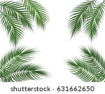 tropical green palm leaves on... | Shutterstock .eps vector #631662650
