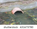 Stormwater Pipe In The Spring....