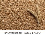 wheat seeds for sprouting on... | Shutterstock . vector #631717190