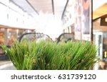 artifact grass and blurred... | Shutterstock . vector #631739120