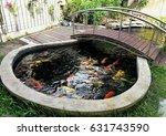 koi fish in pond in the garden | Shutterstock . vector #631743590