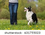 picture of a woman with her... | Shutterstock . vector #631755023