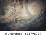 fire in the forest on the lake | Shutterstock . vector #631796714