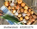 Harvest Of Onion. Agriculture...