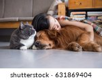 Stock photo girls sleep with cats and dogs 631869404