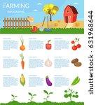 big set infographics vector... | Shutterstock .eps vector #631968644