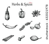 herbs and spices hand drawing... | Shutterstock .eps vector #632021978