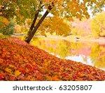 Autumn Landscape With Maples...