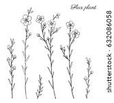 Stock vector flax plant wild field flower isolated on white botanical hand drawn sketch vector doodle 632086058