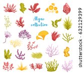 set with algae. isolated art on ...   Shutterstock .eps vector #632129399