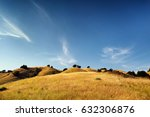Golden Meadow With Hills And...
