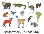 animals of south america vector ... | Shutterstock .eps vector #632358809