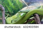 two green snakes on a tree... | Shutterstock . vector #632403584
