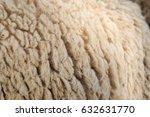 Closeup Of Natural Sheep Wool