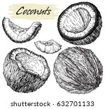 hand drawn coconut set. coconut ... | Shutterstock .eps vector #632701133