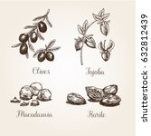 collection of hand drawn herbs... | Shutterstock .eps vector #632812439