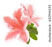 vector illustration of two... | Shutterstock .eps vector #632944193