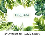 hand drawn watercolor tropical... | Shutterstock . vector #632952098