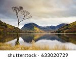 lone tree at buttermere in the... | Shutterstock . vector #633020729