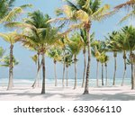 palm trees on a beach in playa... | Shutterstock . vector #633066110