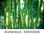 bamboo forest background | Shutterstock . vector #633142628