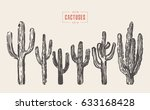 set of cactuses  hand drawn...
