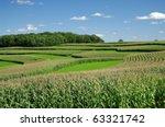 Contour Strip Farming