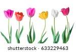 tulips. color vector tulips... | Shutterstock .eps vector #633229463
