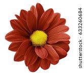 red gerbera flower.  white... | Shutterstock . vector #633260684