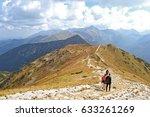 trekking in the mountains | Shutterstock . vector #633261269