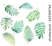 collection of palm leaves and... | Shutterstock . vector #633300764
